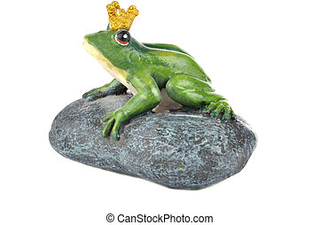 Frog sitting on a stone