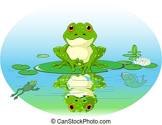 Frog sitting on Water lily leaf