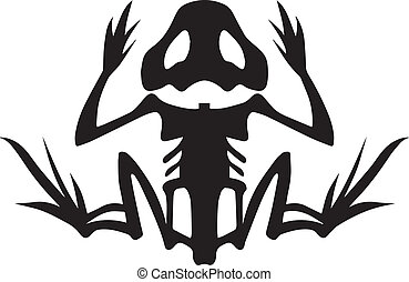 A stylized frog skeleton in silhouette. Symbolic representation of an amphibian animal.