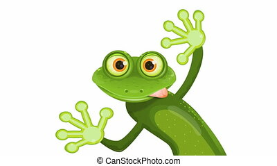frog - video, merry green frog with greater eye
