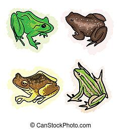 frogs, vier, anders, type, illustratie