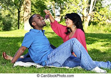 frohes ehepaar, haben picknick, park