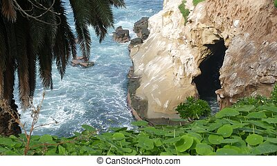 From above sea cave in La Jolla Cove. Lush foliage and sandstone grotto. Rock in pacific ocean lagoon, waves near steep cliff. Popular tourist landmark, natural arch in San Diego, California, USA