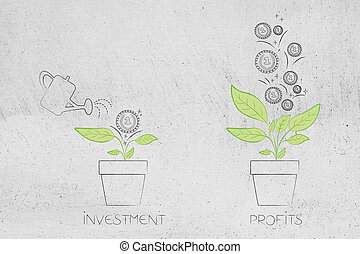 from initial investment to great profits plant with one coin on it and many more coming out of it