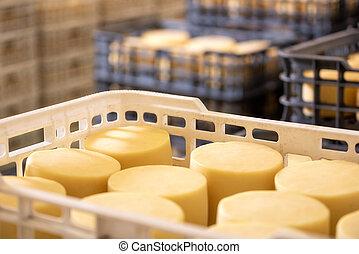 fromage, boîtes, arrangé, usine, warehouse.