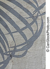 Frond shadow