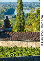 Fronsac Vineyard landscape, Vineyard south west of France,...