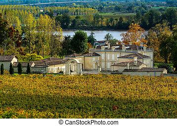 Fronsac Vineyard landscape, Vineyard south west of France