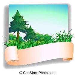 front, leerer , bäume, kiefer, signage