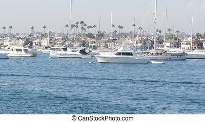 front mer, county., coûteux, beachfront, recours, destination, plage, port, yachts, banlieue, newport, vacances, luxe, usa., pacifique, week-end, vrai, côte, voiliers, propriété, californie, marina, orange