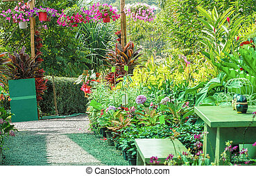 Front or Back Yard, Flowerbed, Lawn, Plant, Summer