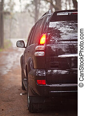Front side of the black SUV in forest