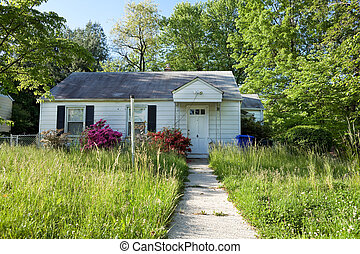 Front View Abandoned Foreclosed Cape Cod Home Long Grass -...