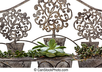 Front View Closeup of Vintage Ornate Wrought Iron Bench