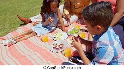 Front view of black family having picnic in the park on a sunny day 4k