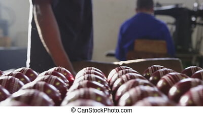 Front view of handmade cricket ball in factory - Front view ...