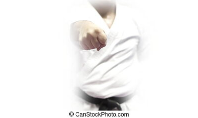 Front view of karate master punching with both hands -...