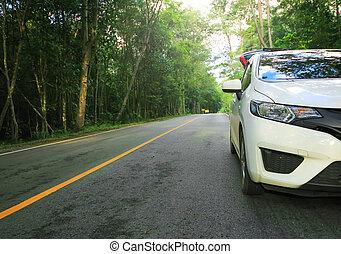 front, von, weißes, auto, parken, auf, asphaltstraße
