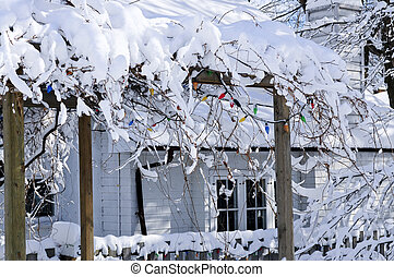 Front yard of a house in winter