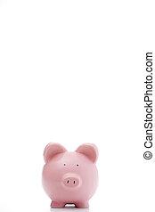 fronte, banca piggy, vista