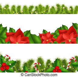 fronteiras, fir-tree, ramos, com, baga holly