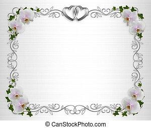 frontera, blanco, orquídeas, raso, invitación