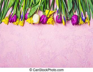 frontera, de, primavera, multicolor, flores, en, un, fondo rosa