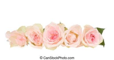 frontera, de, rosas rosa