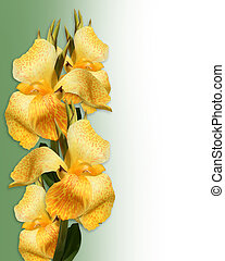 frontera floral, amarillo, canna, lirios