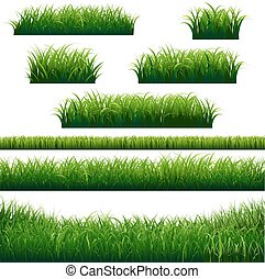 fronteras, pasto o césped, verde, colección