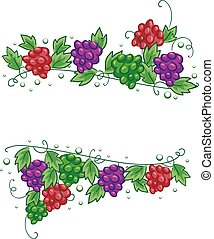 fronteras, vides, uvas