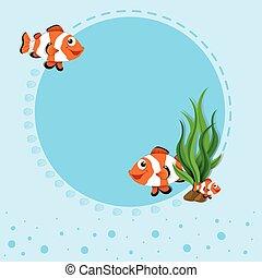 frontière, conception, clownfish