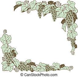 frontière, conception, vigne, raisin