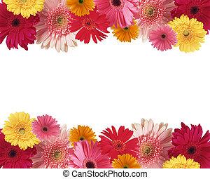 frontière, de, fleurs, à, espace, pour, texte