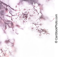frontière, floral
