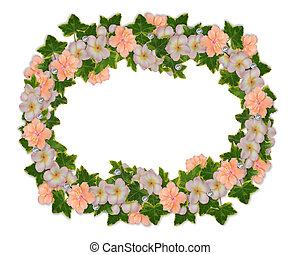 frontière florale, plumeria, et, hibiscus