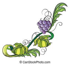 frontière, vigne, raisin