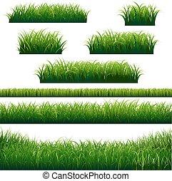 frontières, herbe, vert, collection