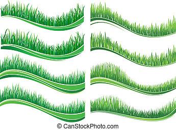 frontières, herbe, vert, coloré