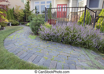 frontyard, 庭, ペーバー, 通り道