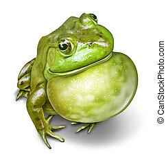 frosch, aufgeblasen, kehle