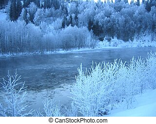Frost by the river - Frosty trees by the river