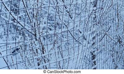 frost falls, white winter landscape, slow motion