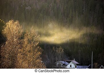 Frost Haze
