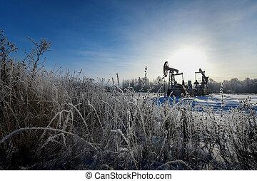 Oil pumpjack.