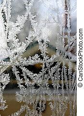 frost pattern window - frost patterns on a window pane