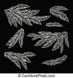 Frost pine tree branches.