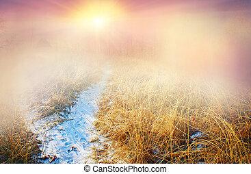 frost, regen