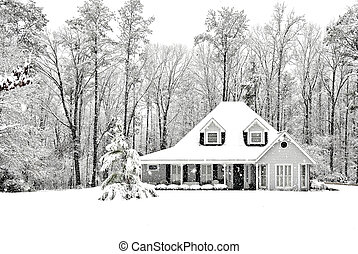 Frosty and Cold winter scence with exective home