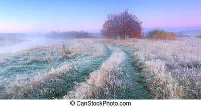 Frosty autumn morning